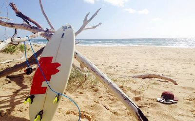 Why Surfing is the Perfect Lifestyle Sport?